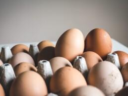 """Le uova da galline allevate """"a terra"""" sono una buona scelta"""